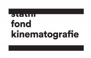 Logo_SFK-300×192-1